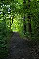 Green (2629887943).jpg