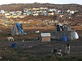 Greenland 2, scene in Ilulissat with sledge dogs.jpg