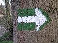 Greenway Botič, šipka.jpg