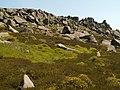 Grinah Stones. - geograph.org.uk - 456933.jpg