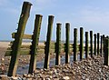 Groynes, Spurn Beach - geograph.org.uk - 944558.jpg