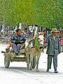 Gyantse, Tibet -5864 - Traffic.jpg
