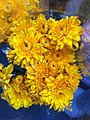 HK CWB 維園年宵市場 Victoria Park Fair - flowers yellow Jan-2012 Ip4.jpg