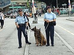 Image Result For Police Dog Dies