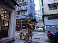 HK Sheung Wan evening Tai Ping Shan Street Dog walking boy with short July-2015 DSC 008.JPG