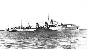 Convoy TM 1 - HMS ''Havelock'' in camouflage