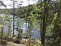 Halkolampi, Espoo, Finland - panoramio.jpg