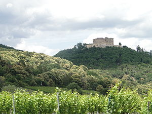 German Wine Route - Vineyards and blooming chestnut trees below Hambach Castle