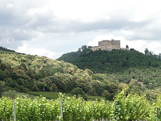 Palatinate (region) - Vineyards and blooming chestnut trees below Hambach Castle