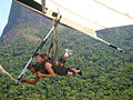 Hang Gliding Hyner PA 2006.jpg