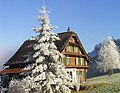 Haus Windleten - panoramio.jpg