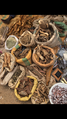 Hausa traditions medicine's 06.png