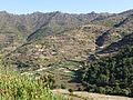 Hauts plateaux-Entre Lalibela et Sekota (4).jpg