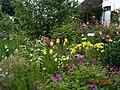 Herbaceous border, Pool Meadow - Flickr - peganum.jpg