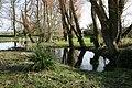 Herringston House gardens - geograph.org.uk - 1560303.jpg