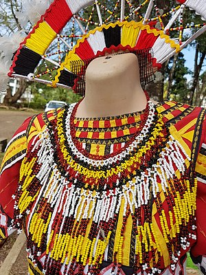 Higaonon traditional women's attire, with bali-og necklace and headdress.jpg