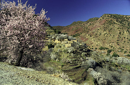 High Atlas6 (js).jpg