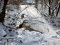 Hluboky potok pri sutoku do Ladomirky.JPG