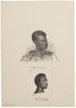 Homo sapiens - Mozambique - 1700-1880 - Print - Iconographia Zoologica - Special Collections University of Amsterdam - UBA01 IZ19400080.tif
