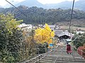 Honyabakeimachi Atoda, Nakatsu, Oita Prefecture 871-0311, Japan - panoramio (9).jpg