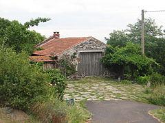 House-IMG 7065.JPG