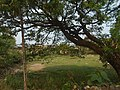 Hpa-An, Myanmar (Burma) - panoramio (174).jpg