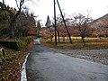 Hyakusaiji Kocho, Higashiomi, Shiga Prefecture 527-0141, Japan - panoramio (1).jpg