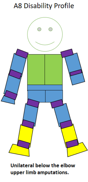 S9 (classification) - Type of amputation for an A8 classified sportsperson.