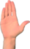 ISWA Hand BaseSymbol 094-01-01.png