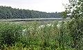 Ilzas ezers, Mākoņkalna pagasts, Rēzeknes novads, Latvia.jpg