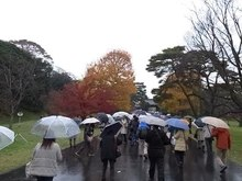 File:Imperialpalace-umbrellas-dec-2014.ogv