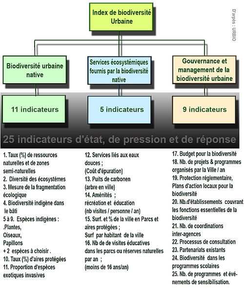 Index indicateur biodiversité urbaine URBIO.jpg