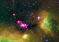 Infant Stars in Serpens.jpg