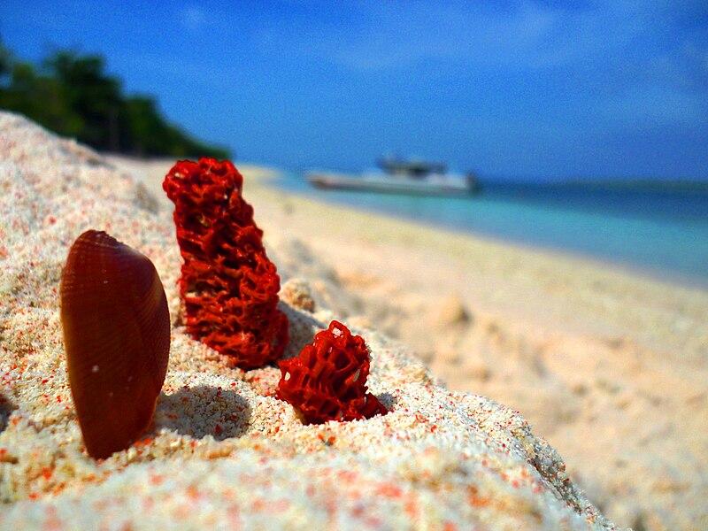 Zamboanga City Beach