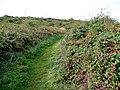 Isle of Anglesey Coastal Path - geograph.org.uk - 1534560.jpg