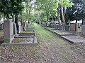 Jüdischer Friedhof Köln-Bocklemünd - Gräberfelder (13).jpg