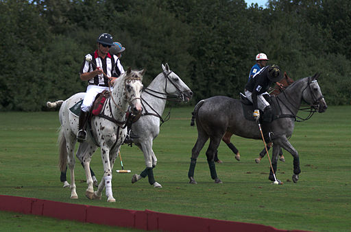 Jaeger-LeCoultre Polo Masters 2013 - 25082013 - Match Legacy vs Veytay-Jaeger-Lecoultre 21