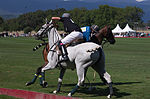 Jaeger-LeCoultre Polo Masters 2013 - 31082013 - Match Legacy vs Jaeger-LeCoultre Veytay for the third place 66.jpg