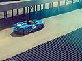Jaguar - Project 7 (9281086735).jpg