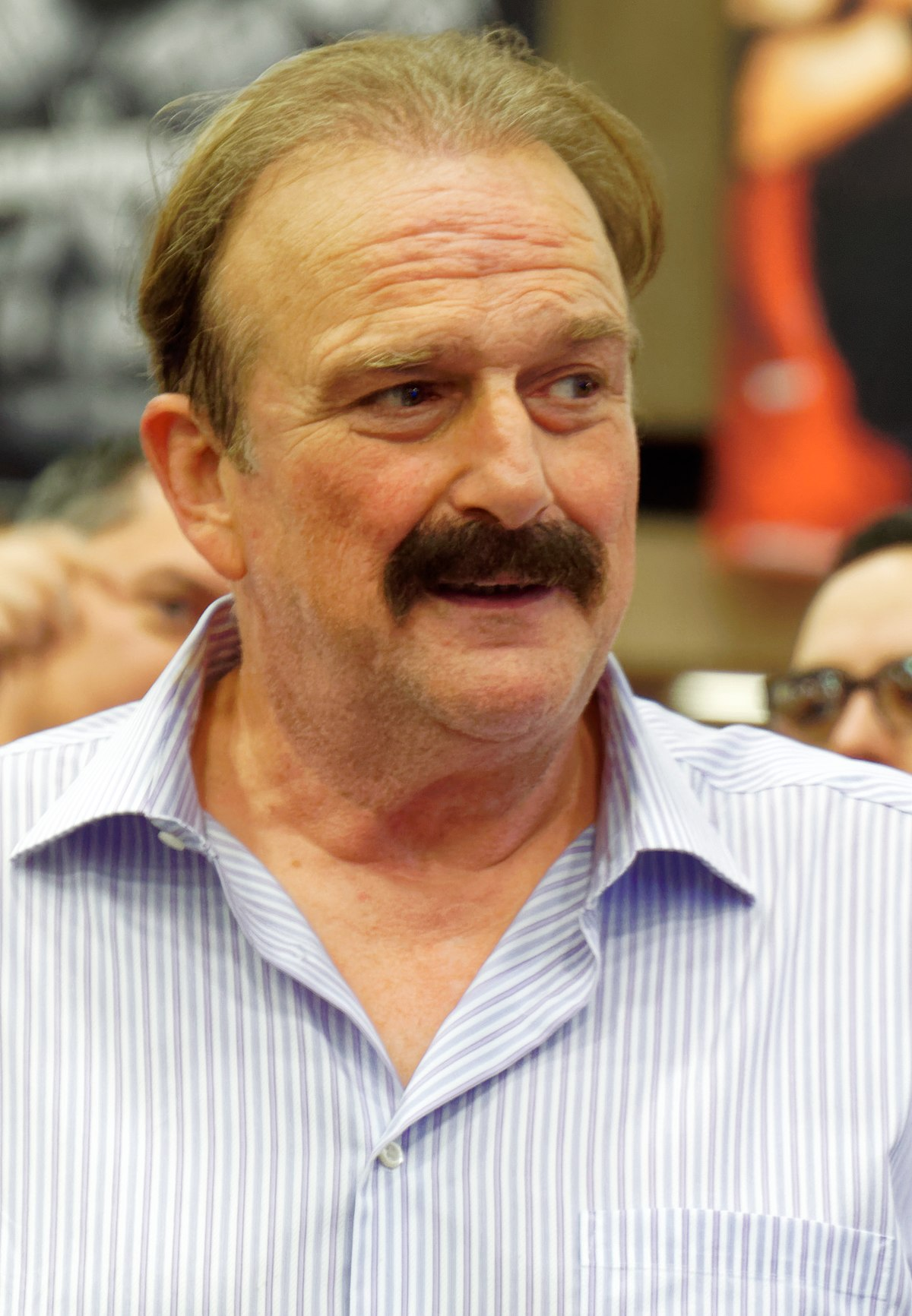 Jake Roberts net worth