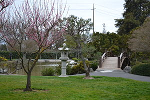Japanese Friendship Garden (Kelley Park) - Image: Japanese Friendship Garden (Kelley Park) view 6