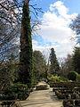 Jardín Botánico de Madrid en febrero (16655719282).jpg