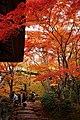 Jojakkoji Kyoto08s3s4500.jpg