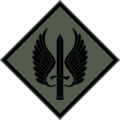 Jordanunitinsignia3.png