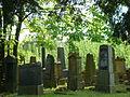 Judenfriedhof-Rappenau-2012-103.JPG