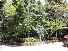 jungle island paintball