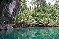 Jungle lake at the entrance to Puerto Princesa Subterranean River Cave, Palawan, Philippines.jpg