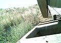 Juniper Dunes Critter Cam (20872341904).jpg