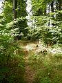 Křížová cesta Krásná Lípa 07.jpg