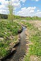 Kalletal - 2015-05-02 - LIP-013 Aberg-Herrengraben (49).jpg